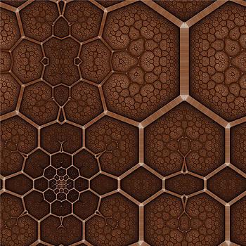 Cellular Network by Ross Hilbert