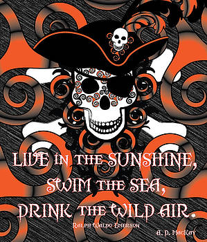 Celtic Artist Angela Dawn MacKay - Celtic Spiral Pirate in Orange and Black