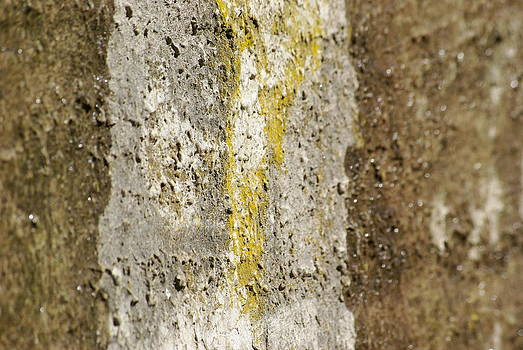 Cement Abstract by Lindy Whiton