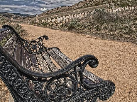 Cemetery Bench by Greg Bush