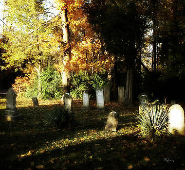Cemetery in the Morning by Cynthia Lassiter