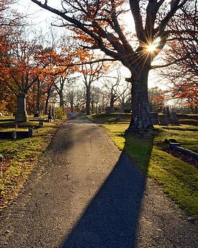 Cemetery Sunlight by Dave Saltonstall