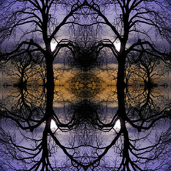 Cemetery Tree Mirror  by Kelly E Schultz