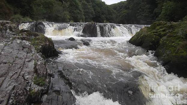 Cenarth Falls 4 by John Williams