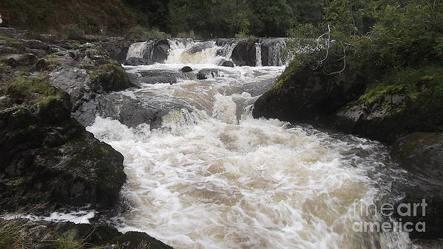 Cenarth Falls 5 by John Williams