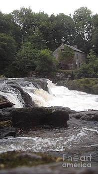 Cenarth Falls 8 by John Williams