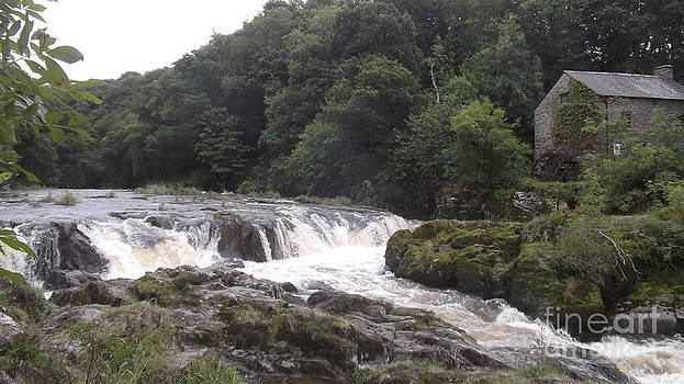 Cenarth Falls 9 by John Williams