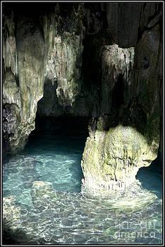 Agus Aldalur - Cenote del Yucatan 2
