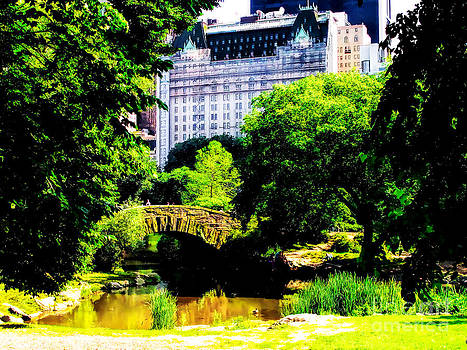 Anne Ferguson - Central Park at 59th Street