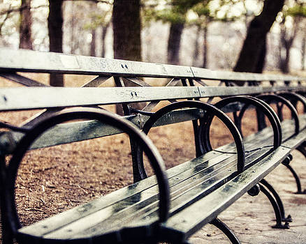 Lisa Russo - Central Park Bench