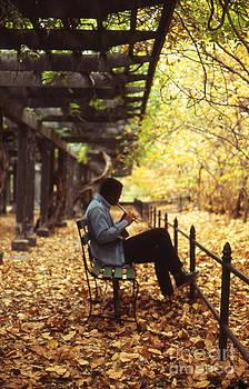 Central Park by Erik Falkensteen