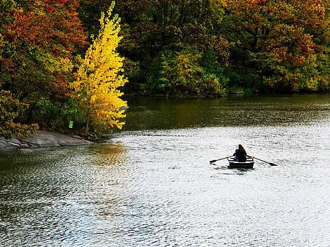 Central Park Fall Foliage 1 by Frank McAdam