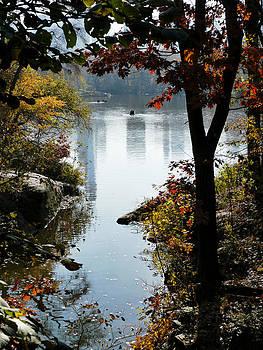 Central Park Fall Foliage 5 by Frank McAdam