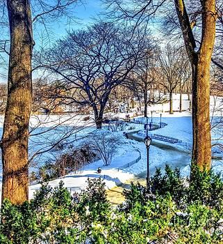 Central Park II by Debbi Granruth