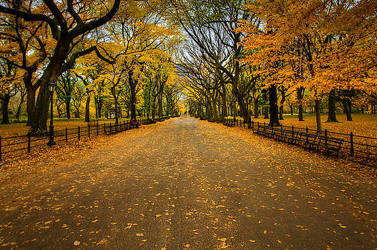 David Hahn - Central Park in Autumn