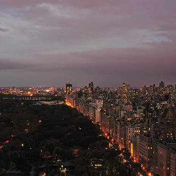 Central Park Nyc Eve by Joseph Hedaya