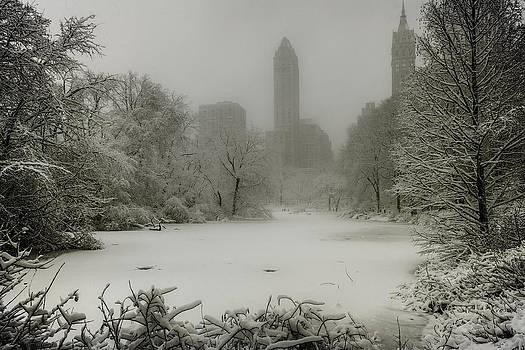 Chris Lord - Central Park SnowStorm