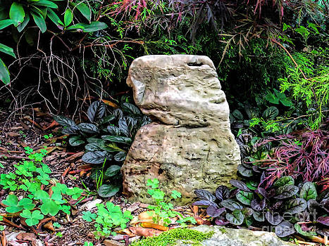 Anne Ferguson - Central Park Stone