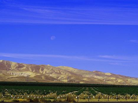 Central Valley Day Moon by Bobby Miranda