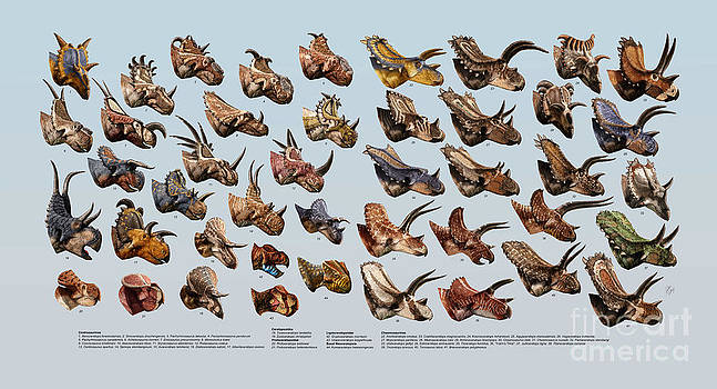 Ceratopsian Cornucopia by Julius Csotonyi