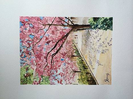 Cerejeiras em Flor by Silvia Lemos