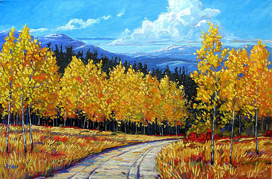Chaffee County Back Road by Patty Baker