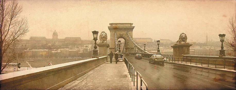Chain Bridge in Budapest by Hrvoje Puhalo
