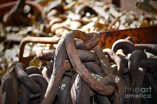 Gwyn Newcombe - Chain Picking