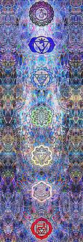 Chakras by D Walton