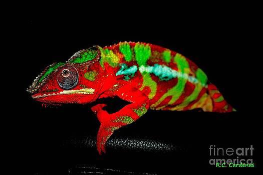 Chameleon Power by Rebecca Christine Cardenas