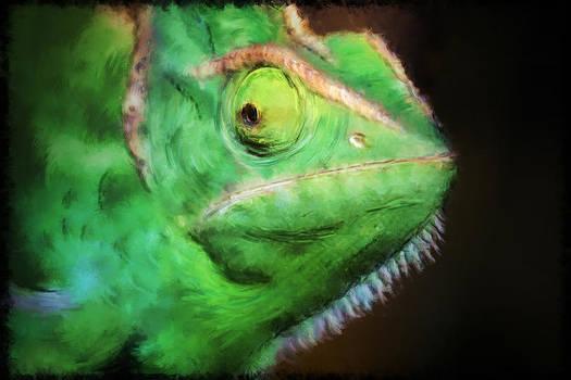 Chameleon's Smile -- Wenn das Chamaeleon Laechelt by Arthur V Kuhrmeier