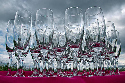 Champagne Flute Forest by Richard Hinds