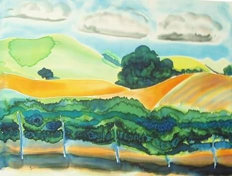 Chance of Rain by Jill Targer