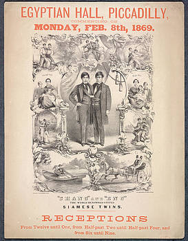 Chang And Eng by British Library