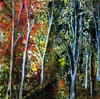 Changing Forest by Katey Sandy