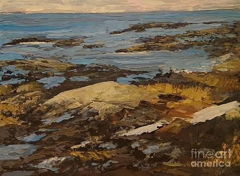 Changing Tides by Beverly Belanger
