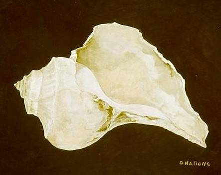 Channel Whelk  by Diane Nations