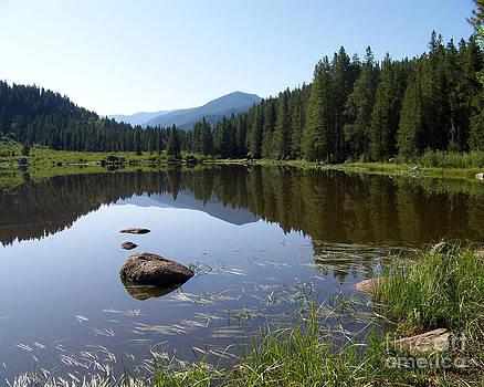 Chapman Reservoir by Laurie Klein