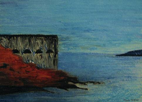 Charles Fort by Paula Peltier