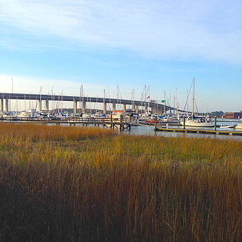 Charleston Harbor and Marsh by M West
