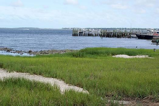 Charleston Harbor by Bill Talich