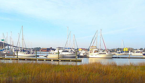 Charleston Harbor Boats by M West