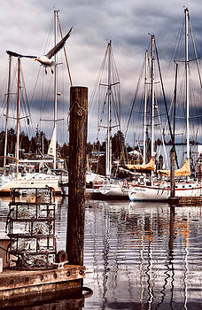 Charleston Marina At the End of the Day by Sally Bauer