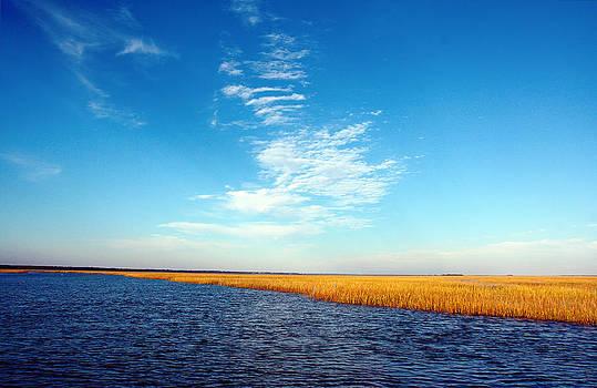 Charleston River by Justyn  Lamb