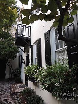 Charleston SC by Diane Greco-Lesser