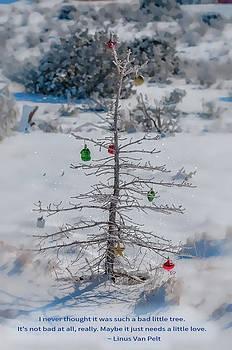Charlie Brown Christmas Tree by Lou  Novick