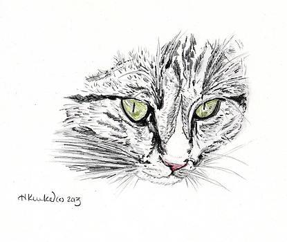 Charlie Cat by Heidi Kunkel