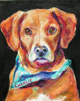 Charlie by Judy  Rogan