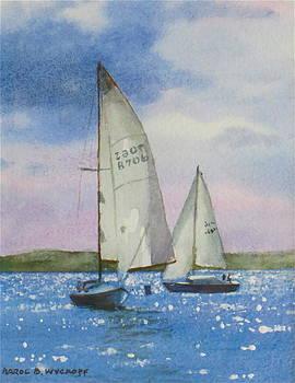 Charlotte Harbor Sail by Karol Wyckoff