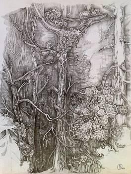 Charmed Forest by Iya Carson